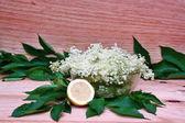 Elderberry flowers and lemons — Photo