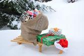 圣诞袋 — 图库照片