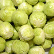 Brussels Sprouts — Foto de stock #27209865