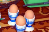 Eggs in supports — Stock Photo