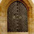 Iron gothic doors — Foto Stock