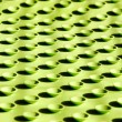 Field of sucking cups — Stockfoto