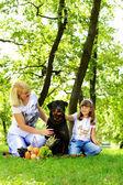 женщина, девушка и собака на траве. — Стоковое фото