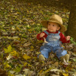 Baby with a hat and salopette in a autumn scene on dried leaves — Stock Photo