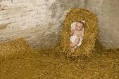 Baby jesus lying on hay in christmas scene — Stock Photo