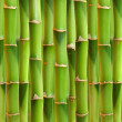 Stock Photo: Bamboo stalks background.