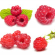 Raspberry set isolated — Stock Photo