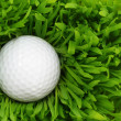 Golf ball in the green grass — Stock Photo