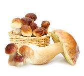 Boletus Edulis mushrooms in straw basket isolated on white backg — Stock Photo
