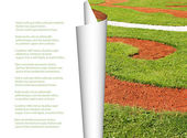Beautiful green rolled grass with place for your text. — Stock Photo