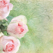 Pink roses on background with copy space. — Stock Photo