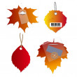 Vector tag label , autumn leaves. — Stock Vector