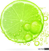 Green lime with water splash — Stock Vector