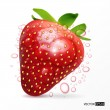 Stock Vector: Strawberry macro isolated on white