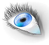 Human blue eye — Stock Vector