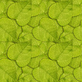Seamless leaves background — Stock Photo