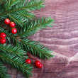 Christmas pine tree branch — Stock Photo
