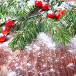 Christmas pine tree branch — Stock Photo #29780339
