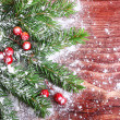 Christmas pine tree branch — Stock Photo #29780593