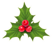 Holly berry Christmas decoration isolated — Stock Photo