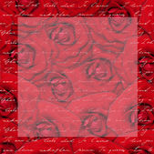 Red rose flower background. — Foto Stock