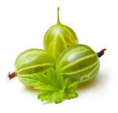 Gooseberries with leaf — Stock Photo