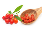 Goji berry isolated — Stock Photo