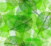 緑の葉のシームレスな背景 — ストック写真