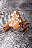 Christmas tree gingerbread cookie and spices — Stock Photo