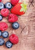 Raspberry and blueberry — Stock Photo