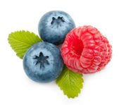 Raspberry and blueberry isolated — Stock Photo