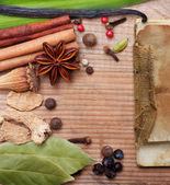 Different spices and herbs — Stockfoto