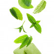 Two chewing gum with mint leaves — Stock Photo #44241369