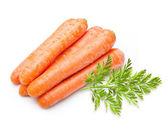 Carrot isolated — Stok fotoğraf