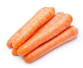 Carrot isolated — Stock Photo