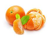 Cítricos naranjas, mandarinas — Foto de Stock