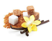 Brown and white cane sugar cubes — Stock Photo