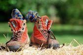 Trekking ayakkabı — Stok fotoğraf
