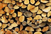 Fire wood — Foto Stock