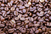 Roasted coffee beans — Стоковое фото