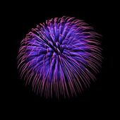 Blue and violet colorful fireworks — Stock Photo