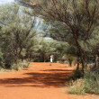 Stock Photo: Australia, Uluru area, unknown mwalking in path in middle of Australia, one min bush background,popular place in Australia,selective focus, mwalking in nature,australilandscape