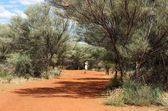 Australia, Uluru area, unknown man walking in the path in middle of Australia, one man in the bush background,popular place in Australia,selective focus, man walking in the nature,australian landscape — Stock Photo