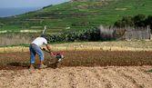En okänd man som arbetar i fältet på våren, selektiv inriktning, bullriga, vår bakgrund, bonde i fältet på våren, jordbruksmark och arbetande manen, säsongsbetonade arbeten — Stockfoto