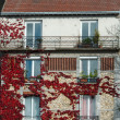 Old aged building fragment, house fragment in autumn time. France, Normandy. French style. Stylized building with selective focus. No people. Aged building. Windows. Facade Exterior — Stock Photo #38399575