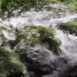 Stock Video: Still shot of river rapids from closer view