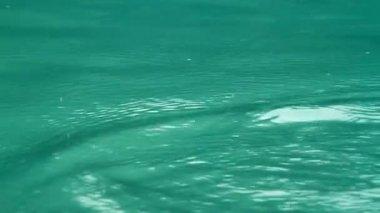 翡翠的水 — 图库视频影像