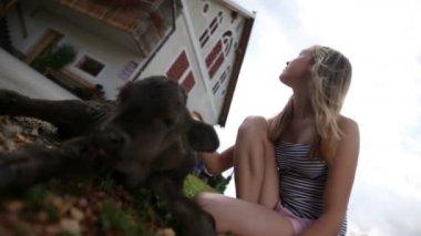 девочка-подросток, ласковый теленок перед домом — Стоковое видео