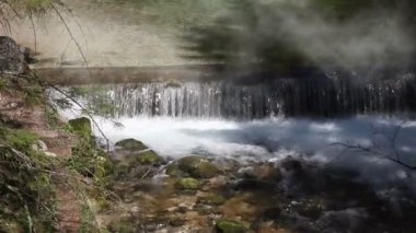 Still shot of a river rapids with morning mist — Stok video