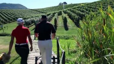 Crane shot of couple that goes golfing through the beautiful landscape of the golf court in the middle of the wineyard — Stock Video